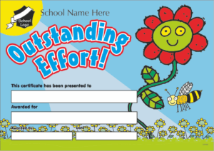 Outstanding Effort Certificate - School Reward Certificates