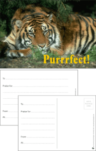 Purrfect Tiger Praise Postcard - Praise & Reward Postcards for Schools