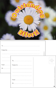 Outstanding Effort Daisy Praise Postcard - Praise & Reward Postcards for Schools