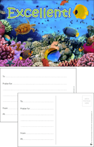 Excellent Sea Life Praise Postcard - Praise & Reward Postcards for Schools