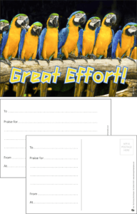 Great Effort Parrots Praise Postcard - Praise & Reward Postcards for Schools